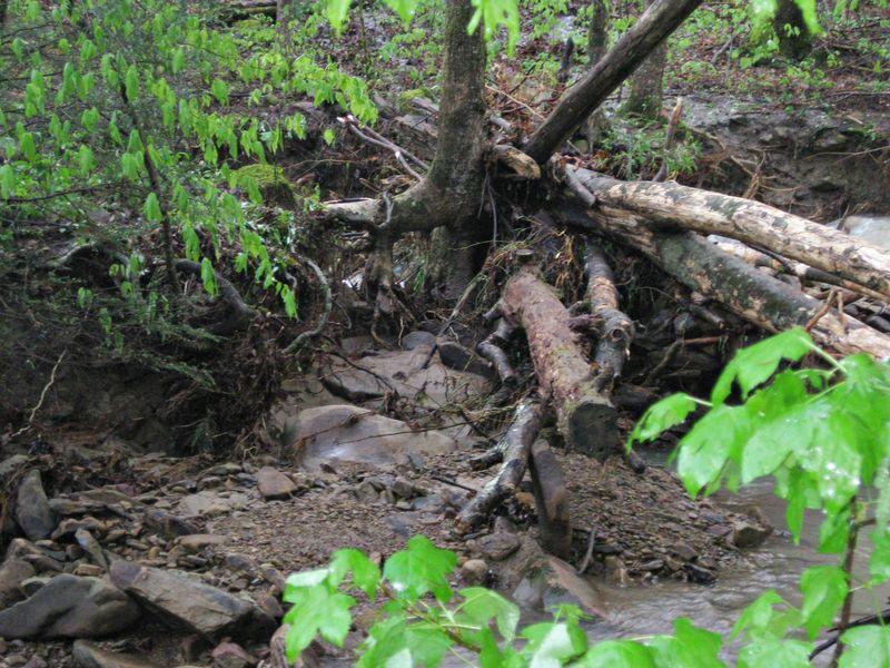 April 3 flooding_4April12 (35)ed