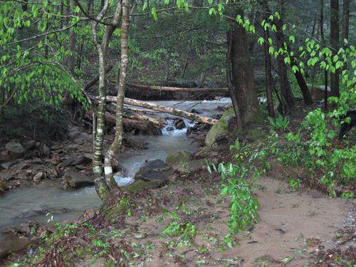 April 3 flooding_4April12 (2)ed